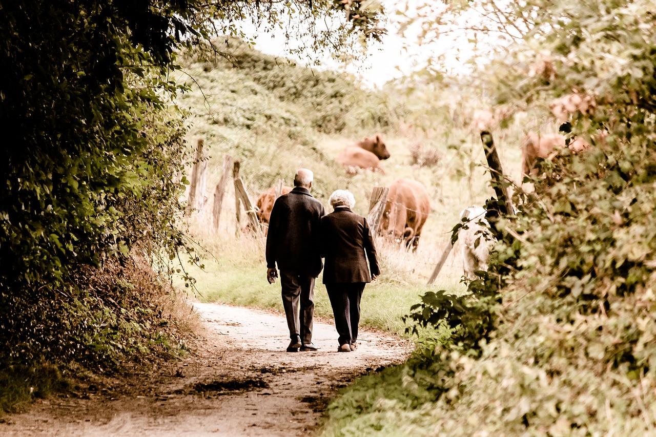 Zkušenosti s péčí o pacienty s Alzheimerovou chorobou